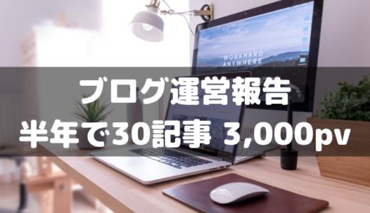 【運営報告】ブログ開始半年で30記事&月間3,000PV達成!副業ブログを始めて半年が経過した